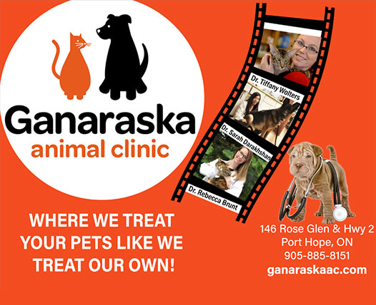 Ganaraska Animal Clinic