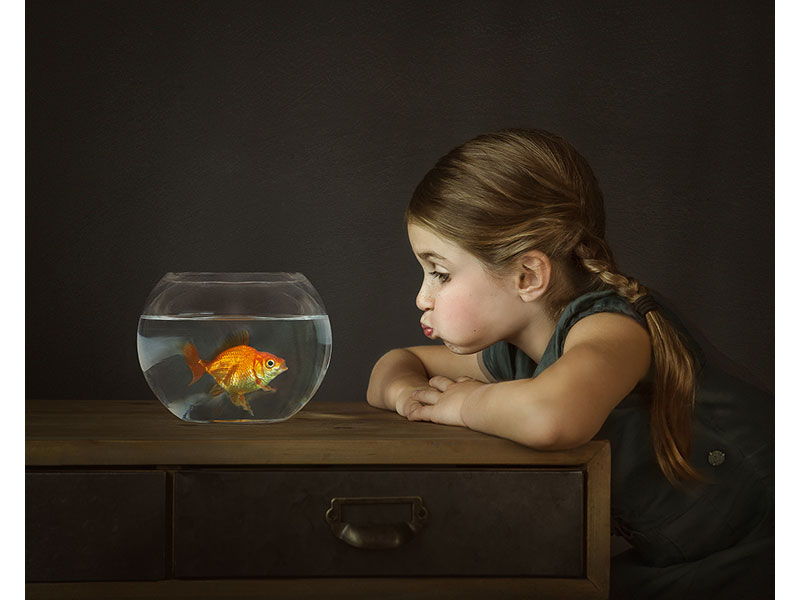 Gus the Goldfish by Alana Lee